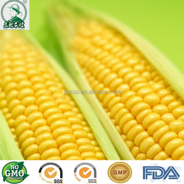 Non GMO Sweet <strong>corn</strong> export to dubai