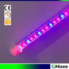 Hot sale T8 T5 full spectrum LED plants grow light
