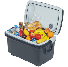 45L Top grade Supreme Quality portable insulin cooler box/mini fridge
