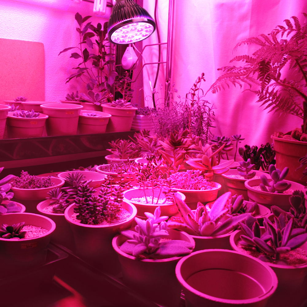 54W 36W LED Grow Light Indoor growing lights Hydroponics growing system For Garden Greenhouse plants Herbs Vegetable Flowers (7)