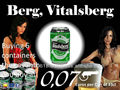 VITALSBERG Premium Lager Beer 4.8% canned 24x33cl