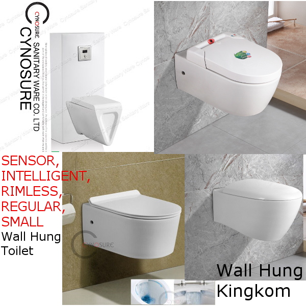 Ceramic Wall Hung Toilet, Sensor Wall Hung Toilet, Rimless Wall Hung Toilet