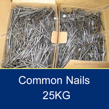 25KG Polished Wire Nails Price