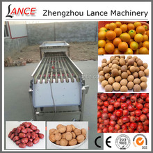 Professional olive vibration machine for date/walnut/haw/tomato/potato/orange with video