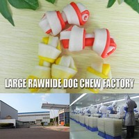2016 big sale natural rawhide expanded pet jerky live pets for sale porkhide dog treat and Duck Rolls snack