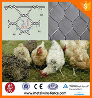 opening 13mm hexagonal Wire Mesh