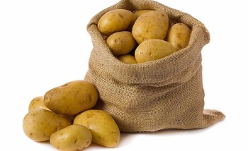 10KG carton 20kg mesh bag quality fresh potato