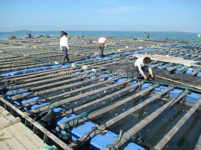 slip resistant surface cage farming floating system