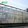 Commercial Agricultural Glass Greenhouse With Low