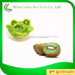 organic kiwi p.e.,natural fruit flavor powder,kiwi fruit flavor powder
