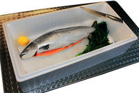 EPS boxes fresh fish boxes item a
