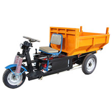 China made strong power1000w three wheel electric moped cargo tricycle