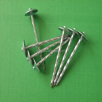 zinc umbrella head Roofing nails factory with washer