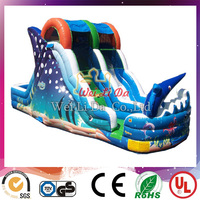 EN14960 factory high quality rainbow inflatable water slide