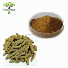 Bodybuilding Supplements Powder Morinda Root Extract