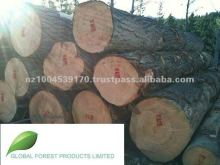 New Zealand Radiata Pine Logs - AO Grade