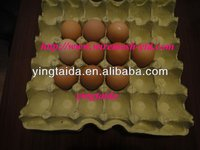 egg holder tray