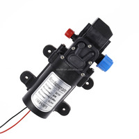 DC 12V 5L/min 60W mini electric portable car washing Water Pump with Automatic Switch