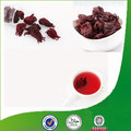 Best Slimming Hibiscus Sabdariffa Tea with Organic Tea Private Label