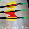 Archery arrow for compound bow/recurve bow