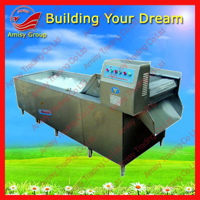 Fruits and Vegetable Processing Equipment to wash celery/spinach/apple/ tomato/pepper