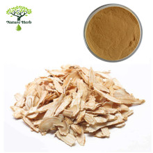 Provide High Quality Angelica Extract/Dong Quai Root Extract