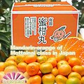 Fresh Japanese Mandarin Orange