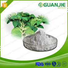 High quality Fress sample 98% resveratrol, 98% trans-resveratrol powder