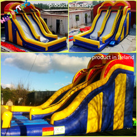 Commercial PVC Vinyl Double Lane Kids Giant Inflatable Slide for Sale