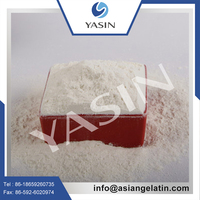 Manufacture Supply Fish Source Pure Marine 100% Fish Collagen Powder