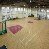 All the Sport Courts Usage Outdoor and Indoor Removable Basketball Floor