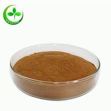 Pure natural organic goji berry extract powder from Ningxia