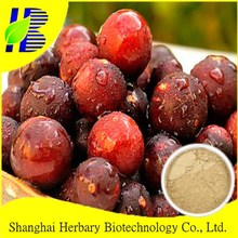 100% Natural supply Vitamin C 20% Camu Camu extract