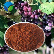 Factory Price Top quality Anthocyanin 98% Grapeseed Extract powder
