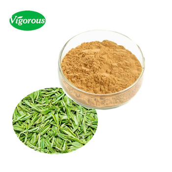 30% supplement green tea extract l theanine
