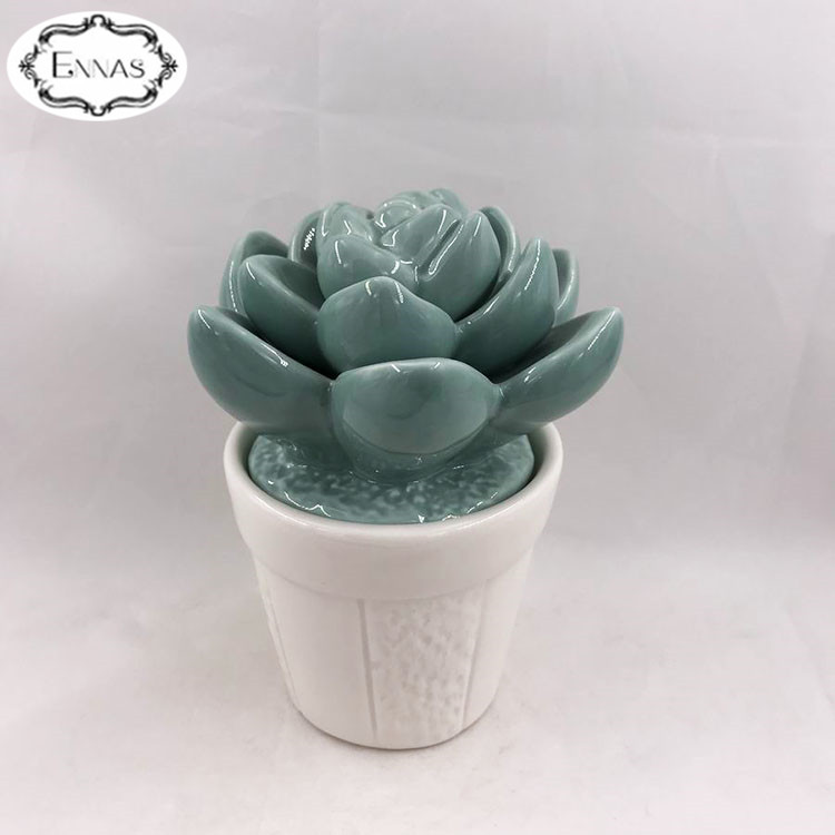Wholesale small succulent ceramic plants flower for table