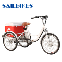 beautiful tricycle with small cargo box