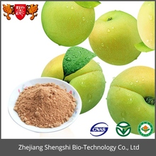 Factory wholesale Fresh Natural Green Plum Extract Powder