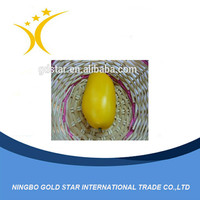 Hot Sale Good quality and cheap Artificial mango for decoration