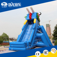 inflatable swimming pool slide , slide with water pool combo inflatable game for kids