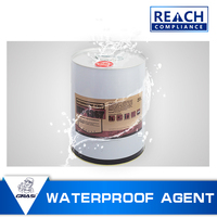 WP1357 Anti-wear waterproof coating organic silicon nano waterproofing new product for Stone artistic building