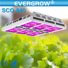 High quality SAGA 600W led grow light with CE&RoHS Approved