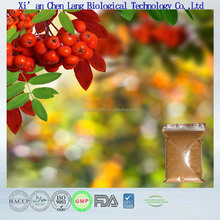Make Stomach Comfortable Hawthorn Berry Fruit Extract Powder
