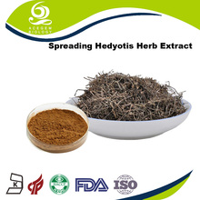 Natural Plant Extract Spreading Hedyotis Herb P.E. Best Price