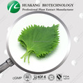 100% natural Mulberry Leaf Extract Powder