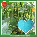Soluble Fertilizer NPK 12-3-43 Special For Cucumber In Tunnel Or Greenhouse