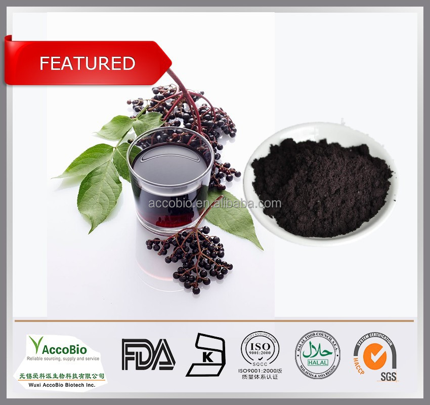 100% Natural Elderberry Extract , Black Elderberry Extract powder , Sambucus Nigra P.E. Anthocyanidin 25%