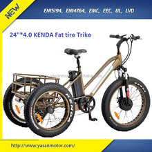 48V 500W Bafang Motor FatTire Cargo e Tricycle with MOZO Suspention Front Fork 3 wheel Electric Bicycles for Sale