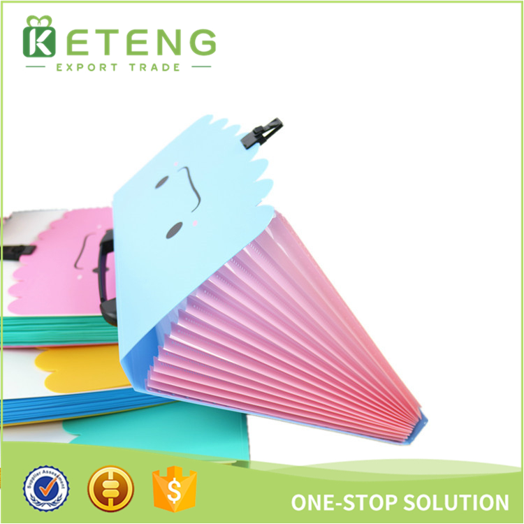 High quality custom expanded plastic file folder