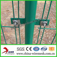 PVC coated double edge fence/ Bilateral wire fence mesh